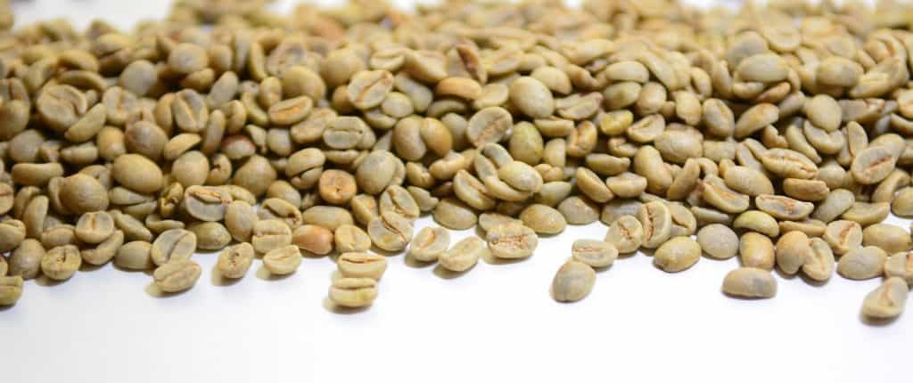 Buy green coffee beans