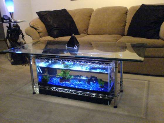 Aquarium-Coffee-Table