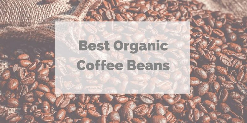 5 Best Organic Coffee Beans (Unlimited Guides from Barista)