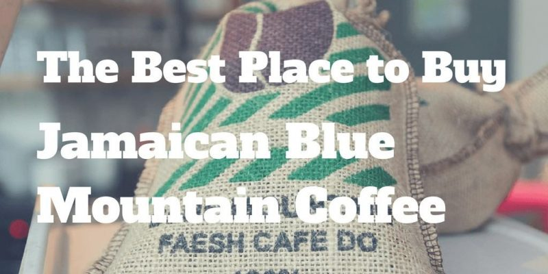 10 Best Jamaican blue mountain coffee (Where to buy?)