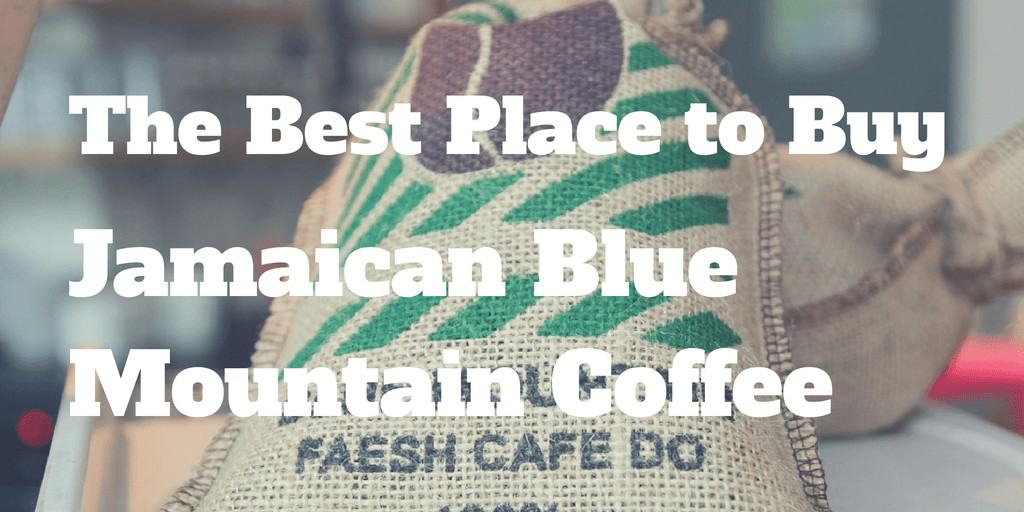 Best Place to Buy Jamaican Blue Mountain Coffee