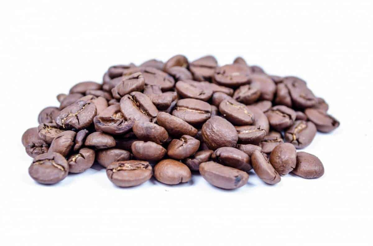best light roast coffee brands