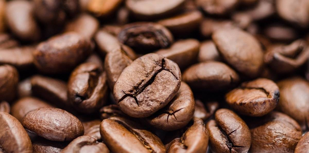 Best Coffee beans for Cold Brew Buying Guide