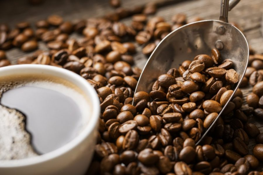 Organic Coffee vs. Conventional Coffee: What's the Difference?